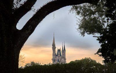 Organizando un viaje a Disney