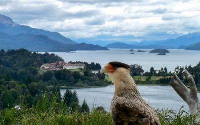 Bariloche y Dina Huapi – Secretos y experiencias
